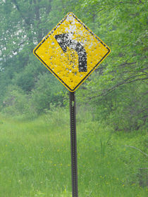 Rednecks, Guns, and Authority, Curve Ahead Sign #2. by Terry Kepner