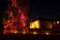 Lichtspiele am Schloss Dyck, Illumina von Aris Grigoriou