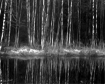 Black and White - SPIEGELUNGEN by Eckhard Röder