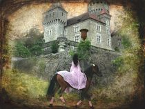 Medieval horse riding - The Lady by barbara orenya