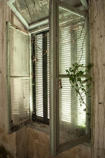 haunted house 13 von veilweb designs