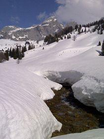 Bachlauf im Winter von Fanny Prankl
