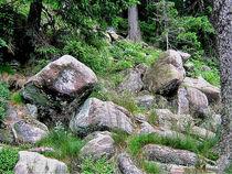 Steine, Stones, Findlinge von shark24