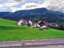 Dekorative Landschaft im Allgäu von shark24