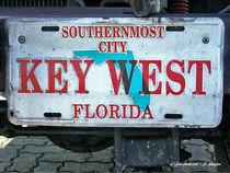 Autokennzeichen Florida von shark24