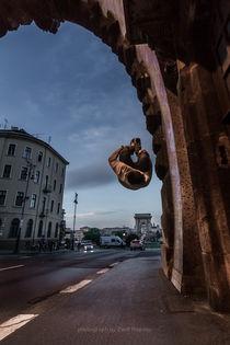 Fighting gravity von Zsolt Repasy
