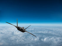 F-22 Raptor: The Hunter and Hunted by P M