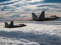 F-22 Raptor Stealth Fighter von P M