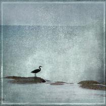 On the Rocks von Linde Townsend
