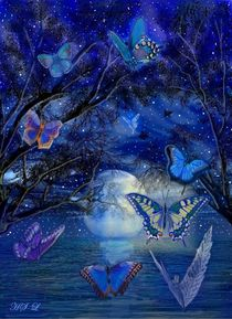 Der Tanz der Schmetterlinge by Heidi Schmitt-Lermann