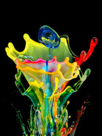 Splash! by VG Bonderoff