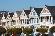 painted ladies von meleah