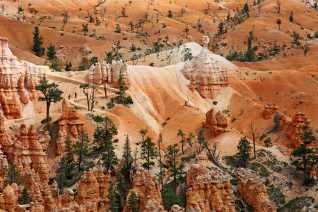 Walkingthehoodoos