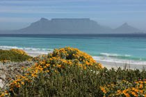 southafrica ... table mountain by meleah