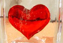 Kein Herz für Rinder |  KIss my Heart | Beso al Corazón by artistdesign