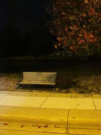 Autumn's Nocturnal Solace by Guy  Ricketts
