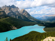 Peyto Lake by Bettina Breuer