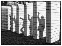 Schattenspiel von Alfred Derks