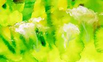 Sommerwiese by Maria-Anna  Ziehr