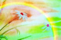 Unterm Regenbogen von Maria-Anna  Ziehr