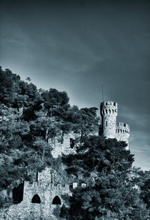The castle von Laura Benavides Lara