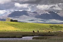 Galway landscape by Karsten Müller