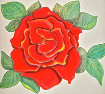 God's Red Rose by Christine Chase Cooper