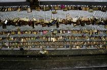 Locks of Love by Thais Da Silva