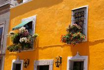 Puebla0152