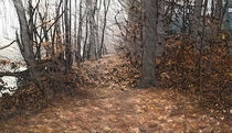 """Autumn Woods"" by Christopher Bigelow"