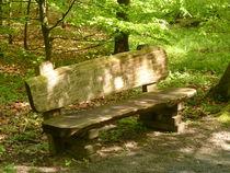 Eine Bank im Wald  von Eva-Maria Di Bella