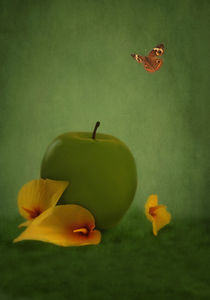 ONE APPLE FELL von tomyork