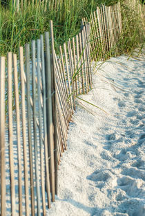beach fence by digidreamgrafix