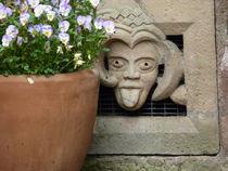 """""""Du kannst mich mal!"""" Hinterhof in Fritzlar. von Eva-Maria Di Bella"""