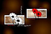 flower color idea fun abstract von Rafal Kulik