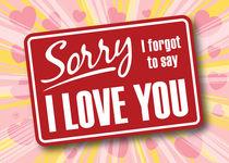 Maarten-rijnen-sorry-i-forgot-to-say-i-love-you