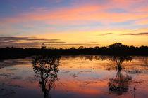 Billabong Sunset von eifel-wildlife
