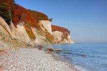 Kreideküste auf Rügen im Herbst by Simone Splinter