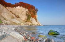 Kreideküste auf Rügen im Herbst von Simone Splinter