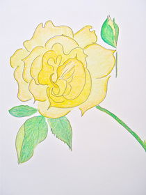 Dawn's Yellow Rose von Christine Chase Cooper