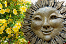 Smiling Sunflower Face von John Mitchell