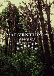 Adventure awaits by Nicklas Gustafsson