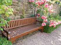 Rose Garden - Bank im Rosengarten by Eva-Maria Di Bella