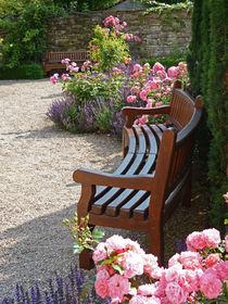Rose Garden - Oase der Ruhe im Rosengarten by Eva-Maria Di Bella