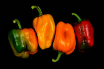 4 peppers 4 by Henrique Souto