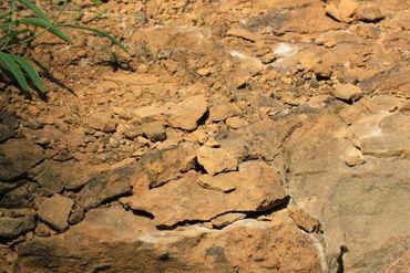 Erdbrauner-sandstein