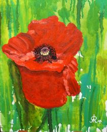 Red Poppy by Rena Rady
