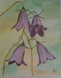 Blaue Glockenblümchen by Rena Rady