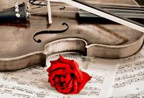 Sweet-music-6