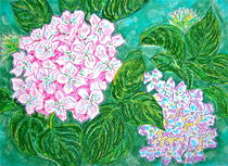 Pink Hydrangea by Christine Chase Cooper